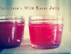 Wildroese_jelly